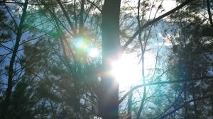 Screen shot 2014-03-05 at 12.30.58 PM
